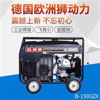 190A汽油发电电焊机三相