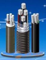 天津控制电缆厂 ACWU90联锁铠装铝合金电缆
