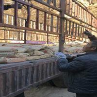 内蒙古铁路轨枕道钉锚固剂厂家 干粉型轨枕道钉锚固剂厂家