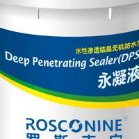 供应桥梁防水防腐防护剂-DPS永凝液