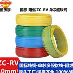 金环宇电线电缆 阻燃ZC-RV线设备线ZC-RV 10平方 质量保证