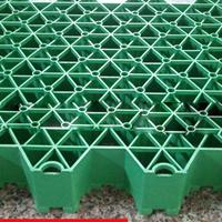 塑料植草格批发厂家
