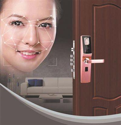 德施曼3D人脸识别智能门锁京东11.11首发
