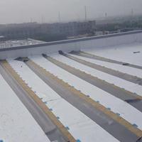 屋面pvc\tpo防水卷材施工队