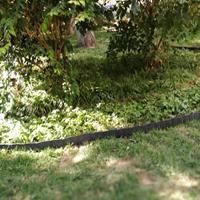 花圃隔离插板