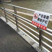 池州护栏厂家 锌钢环保河道安全栏杆批发