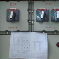 低压防爆断路器箱