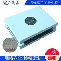 厂家直销定制 净化室铝蜂窝消音手工净化板 铝蜂窝夹芯板