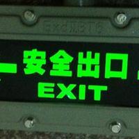 防爆疏散指示灯BYY-AC220V防爆标志灯