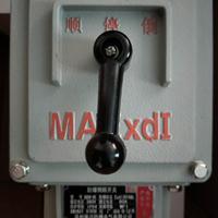 防爆倒顺开关BQXN-15A