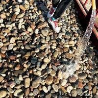 禹州市鹅卵石/河滩石/水冲石生产厂家--临沂鹅卵石虑料厂家批发