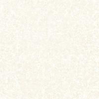 山东淄博800*800mm工程瓷砖生产厂家—抛光砖、通体大理石瓷砖
