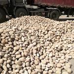 鹅卵石5-8cm_南昌天然鹅卵石_鹅卵石滤料生产厂家