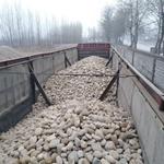 合肥鹅卵石滤料污水处理厂承托层专用滤料/变压器鹅卵石厂家