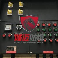 BXK8060防爆防腐控制箱