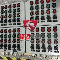 现场检修防爆控制箱