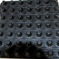 去哪儿购买50mm高PVC片材排水板*推荐山东直销厂家泰安领航