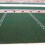 """供应-山东7公分(长宽各为500mm)植草格厂家提供更多""""利好"""""""