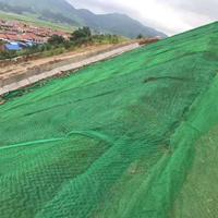 三维植被网2层黑龙江绥化有卖吗