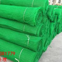 三维植被网绿色环保泰安正泽足量供应