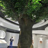 TCP水泥直塑,假山假树,玻璃钢制品、GRC构件、GRG构件、EPS构件
