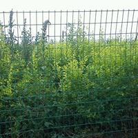 种植周边圈地围山专项使用钢丝围网 武汉铁丝网生产厂家龙泰百川
