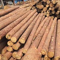 原木生产加工