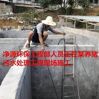 湖南养猪场废水处理工程施工