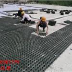 汕尾市双向塑料土工格栅施工规范