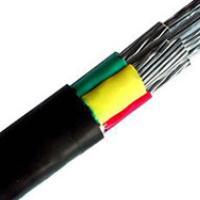 PE 聚乙烯绝缘电力电缆