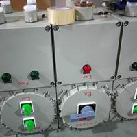 BXK现场防爆电气控制柜
