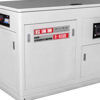 实验室备用40千瓦汽油发电机资料