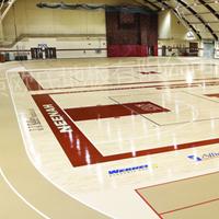 专业生产体育木地板
