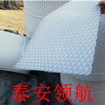 如何获得*HDPE蓄排水板厂家价格-应该是领航的出厂价超值优惠
