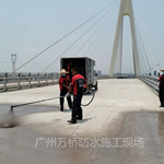 FYT-1改进型桥面防水层中国防水***品牌