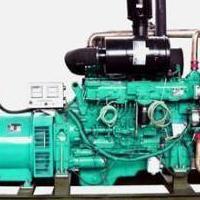 西藏林芝玉柴发电机和昌都玉柴柴油发电机