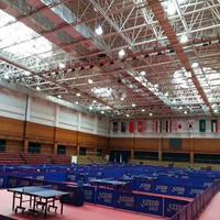 供应乒乓球塑胶地板胶垫 乒乓球馆地胶安装
