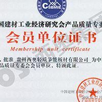 中国建材市场协会装饰线条分会副理事长单位