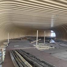 建筑幕墙氟碳铝合金造型铝方通_木纹弧形铝方通吊顶