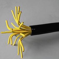 ZR-DJYVP22阻燃仪表信号电缆