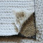 膨潤土防水毯工程如何選用