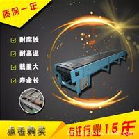 生产各种金属链板输送机折弯链板输送机体积Ljy8