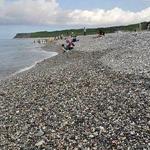 邢台水处理石英砂、海砂、锰砂、沸石厂家销售