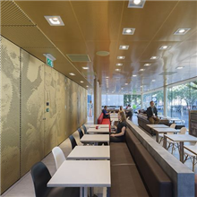 艺术穿孔铝板墙面工程定制