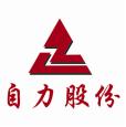 河南自力耐火材料股份有限公司