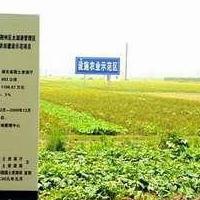 國土資源-土地整理項目標志牌加工制定-瓷磚高溫燒制戶外墻磚批發