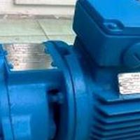 FLOWSERVE/SIHI真空泵LEMC50 AZ X1L OK