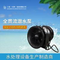 高质量500QGWZ-70全贯流潜水电泵厂家直销