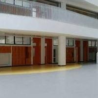 PVC塑胶地板医院加厚耐磨防滑商用办公工程健身房地胶复合地板