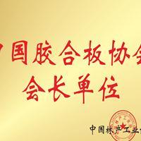 中国胶合板协会会长单位